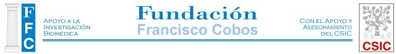 Fundación Francisco Cobos