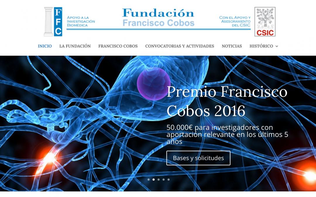 Nuevo diseño de la Página Web de la Fundación
